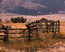 Fences and Fields - Rodger Ewy