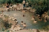 1970s Sharing the Main Pond