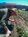 Working the Everson Ranch Garden