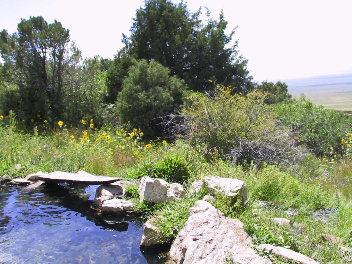 Valley view hot springs colorado, nude teen blonde boy
